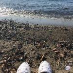 Наживаются «внаглую»: раскрыта схема обмана туристов в Абхазии