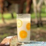 """Молоко с """"сюрпризом"""" подготовил местный производитель"""