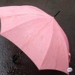 Ливень с грозами и градом: названы дни удара стихии по Приморью
