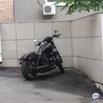 Крутые виражи: мотошоу проходит в центре города