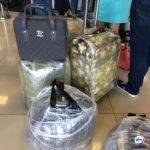 В аэропорту ввели режим усиленного санитарного контроля