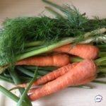 Основной поставщик овощей в Приморье снижает цены. Озвучены цифры