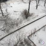 Мощные удары стихии: Гидрометцентр дал прогноз на февраль