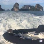 «Вся поцарапанная, побитая»: неожиданную «гостью» прямо  в море встретили приморцы