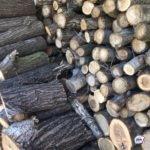 «Много берут за границей у нас»: уникальное производство открыто  в Приморье
