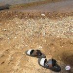 «Прямо  на пляже, где гуляют дети»: в центре Шаморы найден труп