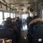 Скандальным инцидентом в автобусе занялась полиция