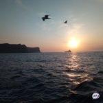 «Остров – это преимущество»: ограничение вводится на Сахалине и Курилах