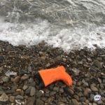 «Такие вот огромные твари»: еще кучу мертвых выбросило на побережье Камчатки