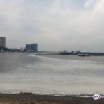 Запаха нет, на ощупь склизкая: что происходит на Набережной Владивостока - версии две