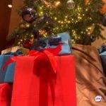 Всем обиженным: россиянам пообещали выслать деньги на подарки