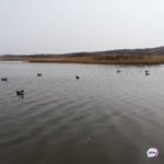 «Раньше его таким не видели»: что происходит на знаменитом озере в Приморье