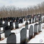 «Цены будут понятные»: россиян предлагают хоронить через сайт «Госуслуг»