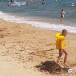 «На пляже больше не загораю»: «красотка» многих напугала на популярном пляже