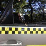 Очередной дебош: топ-менеджер устроила скандал в такси