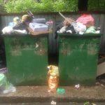 С метра или с человека: как изменятся тарифы на вывоз мусора