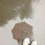 Не застал врасплох: как в Приморье справляются с последствиями тайфуна