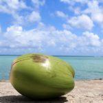 Россияне теперь не смогут посетить «райские» острова без виз