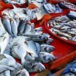 Ни мясо, ни рыба: как не нарваться на продукцию дурного качества