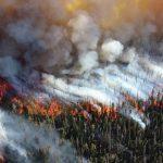 Площадь увеличилась: пожары охватили Сибирь и Дальний Восток