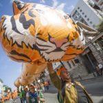 Карнавальное шествие пройдет во Владивостоке