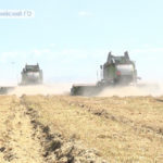 Урожайность на приморских полях изменилась