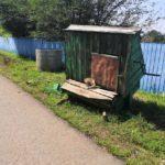Колодец не даёт напиться: жители поселения остались без воды