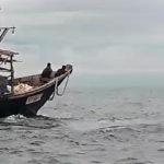 """""""Как у себя дома"""": очевидцы сняли на видео иностранные лодки"""