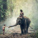 7 вещей, которые нужно знать перед посещением Таиланда