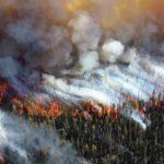 Лесные пожары могут вернуться на Дальний Восток