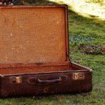 Женщину после свидания нашли в чемодане в лесу