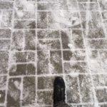 Снег и сильный ветер: прогноз на день дали синоптики