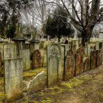 Массовое захоронение найдено на территории элитного загородного клуба