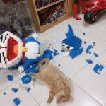 Кот разрушил огромную фигуру в виде изконструктора