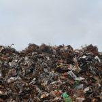 Один глоток: шесть трупов обнаружено на мусорном полигоне