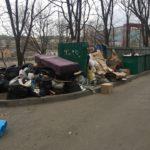 """""""В меня прилетела коробка"""": мусор начал разноситься по дворам"""