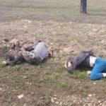 «Дорога не для такой езды»: жесткое ДТП с переворотом попало на видео