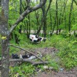 Брошенный на Русском острове минивен привлек внимание проезжающих