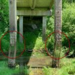 «Его надо делать»: «нужный» мост стал аварийным