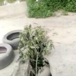 «Еще и объезд по встречке»: мост во Владивостоке проваливается с двух сторон