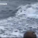 «Чудо расчудесное»: жители Приморья стали свидетелями «шоу» в море