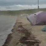 «Не зря МЧС страшилки шлет»: стихия обрушилась на палаточный лагерь в Приморье