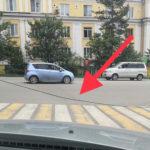 «Вторую неделю лежит»: «проблема» на дороге мешает водителям и пешеходам
