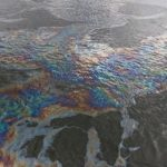 Масштабы бедствия колоссальные: реку заполонила сырая нефть