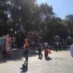 Несмотря на ситуацию: огромное количество людей гуляет на празднике