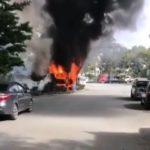 Пламя бушует: очевидцы поделились кадрами из поселка