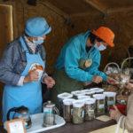 Маршрут выходного дня: фестиваль тайги в центре Владивостока