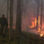Оборону держали сутки: масштабный пожар произошел в курортном районе Приморья