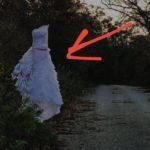 «Может, там невеста еще с субботы лежит»: «диво-дивное» запечатлели горожане на обочине