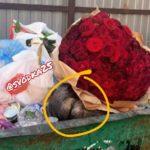 «Там женская голова в мешке?»:  увиденное в мусорке шокировало жителей Владивостока